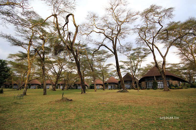 肯亞Kenya▍奈瓦夏湖莊園❤超夢幻森林蘑菇屋╳來當藍色小精靈╳住進童話故事裡!