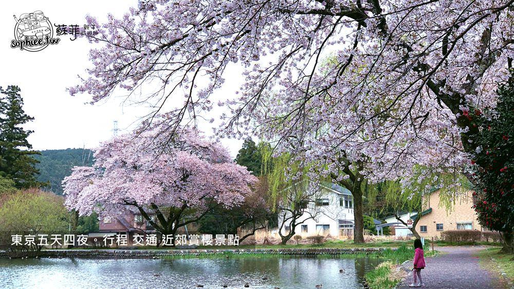 東京賞櫻︱五天四夜自由行。景點交通行程全紀錄