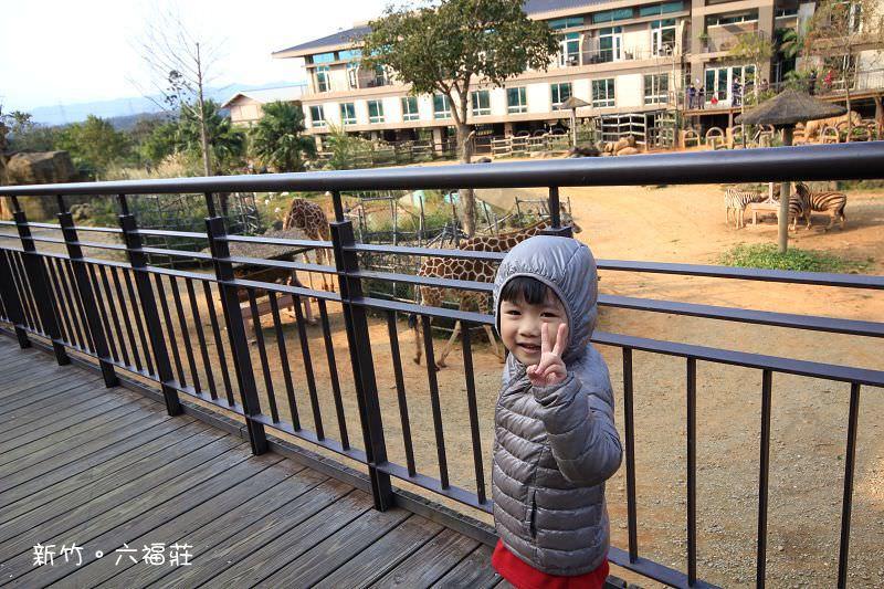 【新竹飯店】關西六福莊生態渡假旅館。與動物的親密接觸