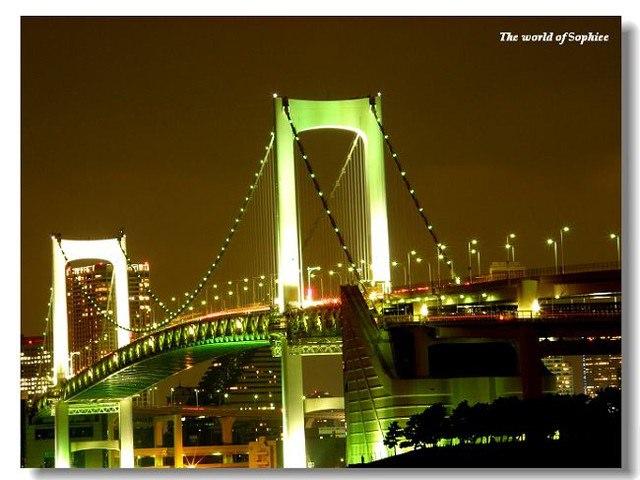 【東京•台場】浪漫的夜晚~