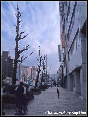 【新春京都之旅】Day2(1)–前往奈良