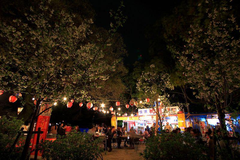 [京都。賞櫻]賞櫻必到的円山公園。熱鬧賞夜櫻!